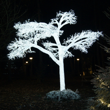 Giant_Ice_Tree_Main.jpg