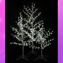 Light_Trees_Main.jpg