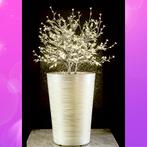 Light_Vase_Main.jpg